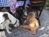 Алиса и собаки.jpg